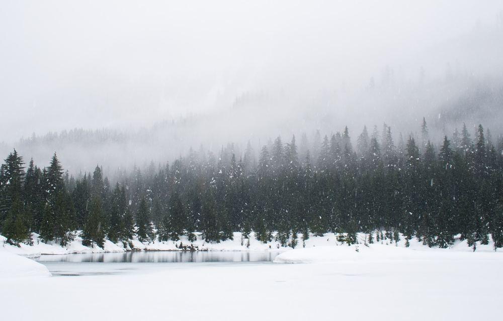 Det er ikke for sent at booke rejser til vinteren